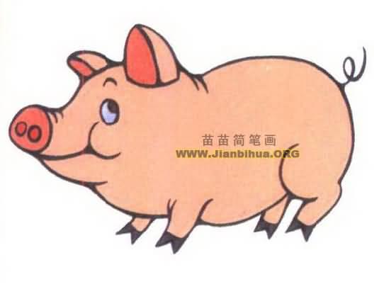 可爱小猪简笔画图片