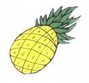 菠萝简笔画图片大全