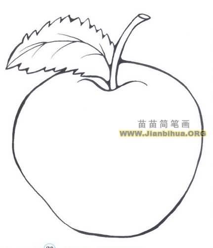水果蔬菜简笔画 水果简笔画  苹果属于蔷薇科,落叶乔木,叶椭圆形,有