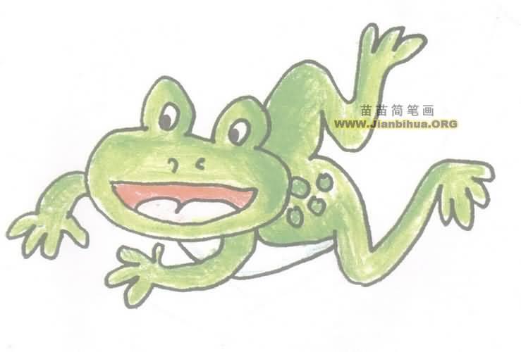 青蛙简笔画图片教程二