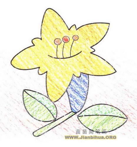 花朵简笔画图片
