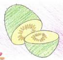猕猴桃简笔画图片教程