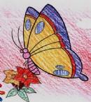 蝴蝶简笔画画法图解