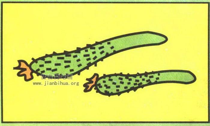 水果蔬菜简笔画 蔬菜简笔画  1,一个长条儿. 2,头上开花儿.