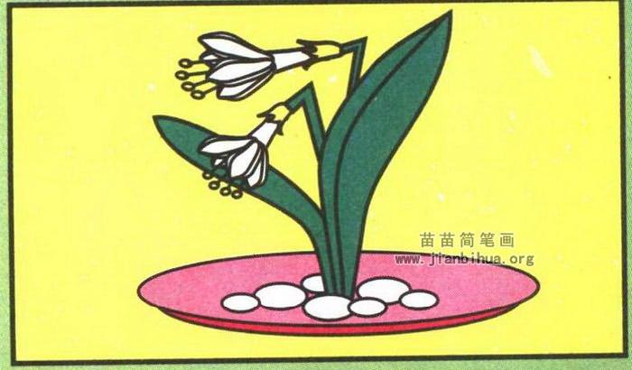 水仙花简笔画
