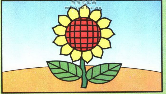 向日葵简笔画彩色图片,教程