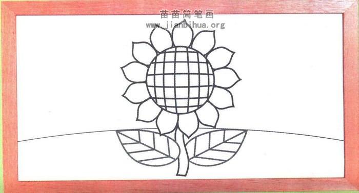向日葵简笔画彩色图片(未上色版)