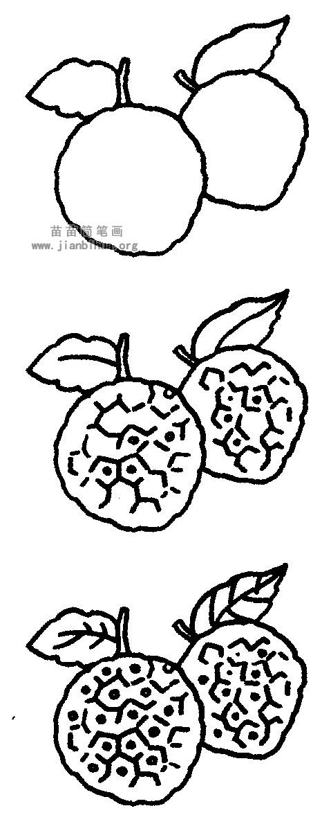 荔枝简笔画