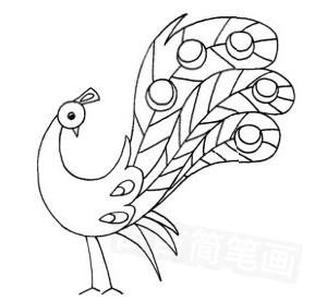 孔雀怎么画简笔画图解