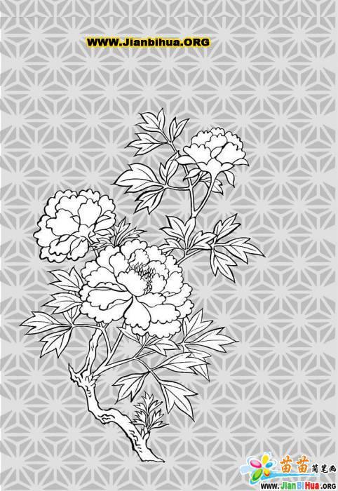 风景简笔画 植物花卉简笔画