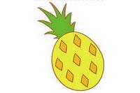 菠萝简笔画怎么画、图片大全