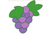 葡萄简笔画怎么画、图片大全