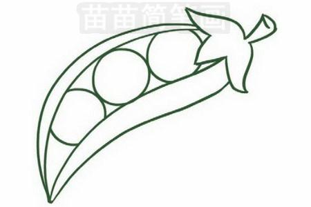 豌豆简笔画图片步骤三