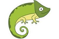 蜥蜴简笔画图片大全、画法