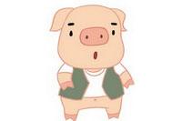 小猪简笔画彩色图片大全、教程