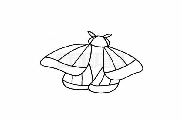 飞蛾简笔画图片步骤四