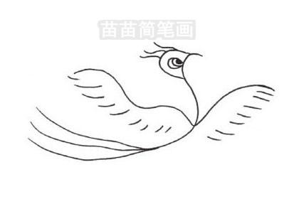 凤凰简笔画图片大全作品三