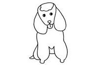 贵宾犬简笔画图片大全、教程