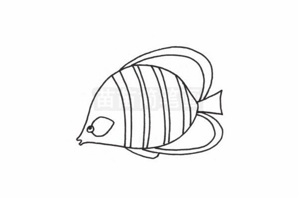 接吻鱼简笔画图片步骤四