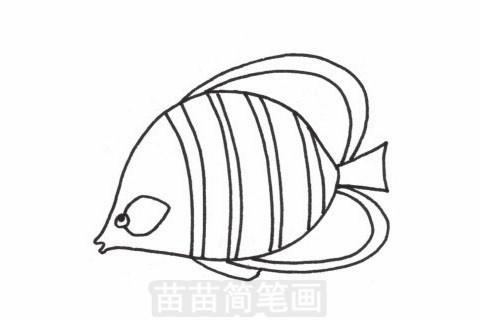 接吻鱼简笔画大图