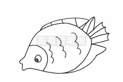 接吻鱼简笔画图片大全作品二