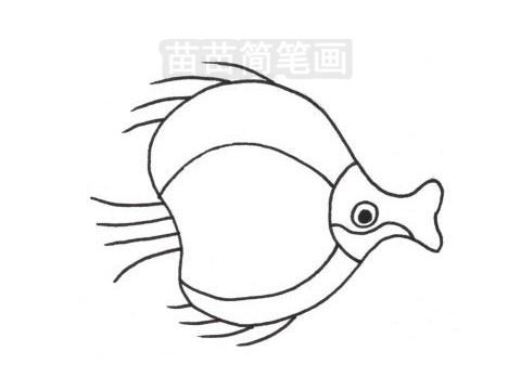 接吻鱼简笔画图片大全作品三