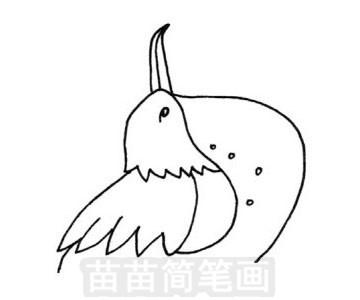 军舰鸟简笔画图片步骤三