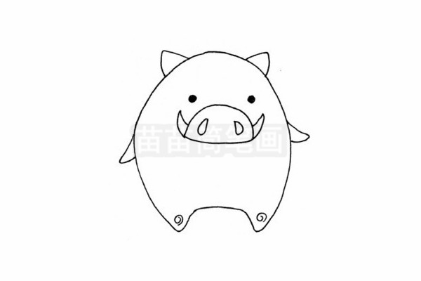野猪简笔画图片步骤四