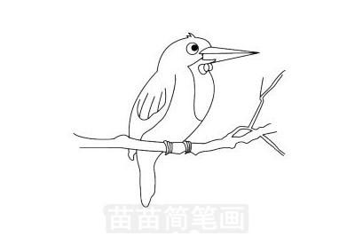 翠鸟简笔画图片大全作品一