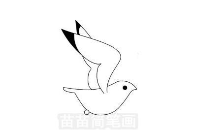 海鸥简笔画图片大全作品一