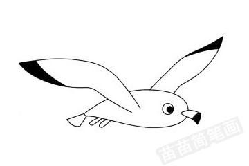 海鸥简笔画图片大全作品四