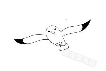 海鸥简笔画图片大全作品五
