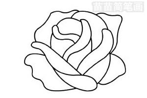 玫瑰花简笔画图片步骤三