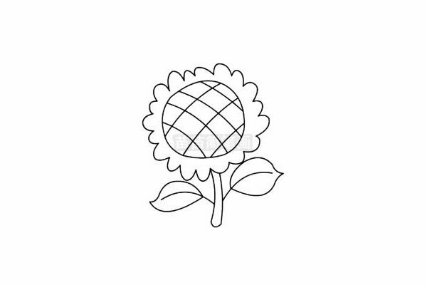 向日葵简笔画图片步骤五