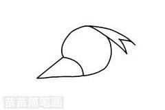 啄木鸟简笔画图片步骤一