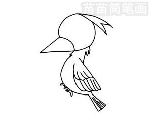 啄木鸟简笔画图片步骤三