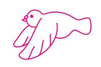 鸽子简笔画图片大全、教程