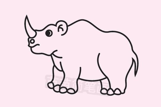 犀牛简笔画图片大全作品二