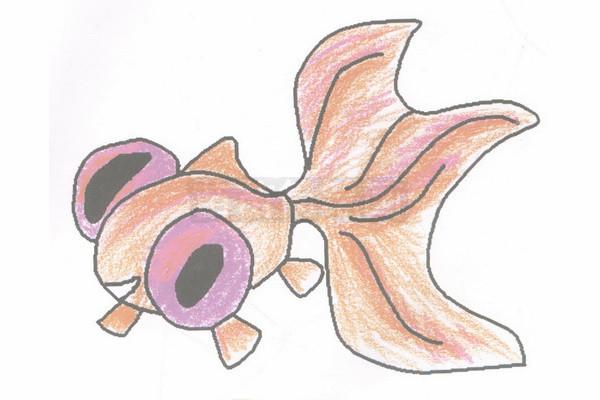 金鱼简笔画图片步骤四