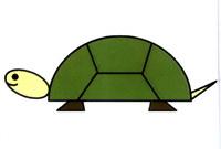 乌龟简笔画怎么画