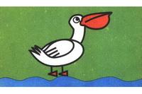 鹈鹕简笔画怎么画