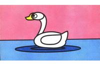 天鹅简笔画步骤分解彩色教程