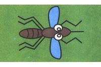 蚊子简笔画怎么画