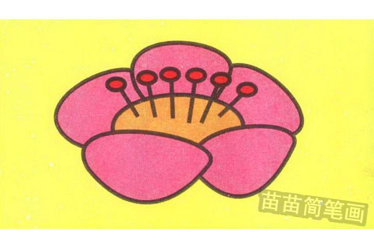 梅花彩色简笔画图片