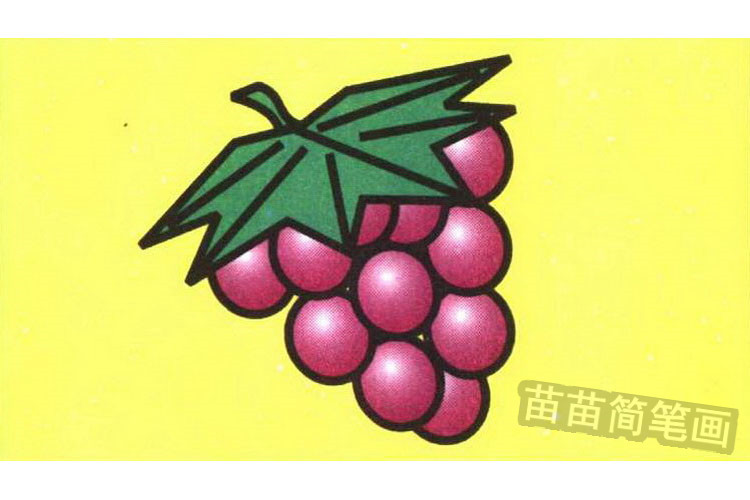 葡萄彩色简笔画图片