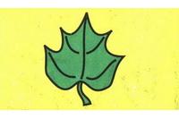 树叶简笔画怎么画