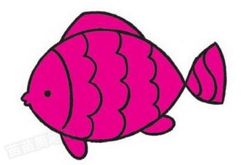 鱼简笔画图片教程步骤四
